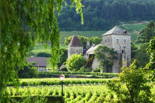 Hvid Bourgogne der er til at betale